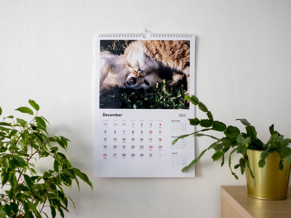 fotokalendar 2022 palermo predna strana